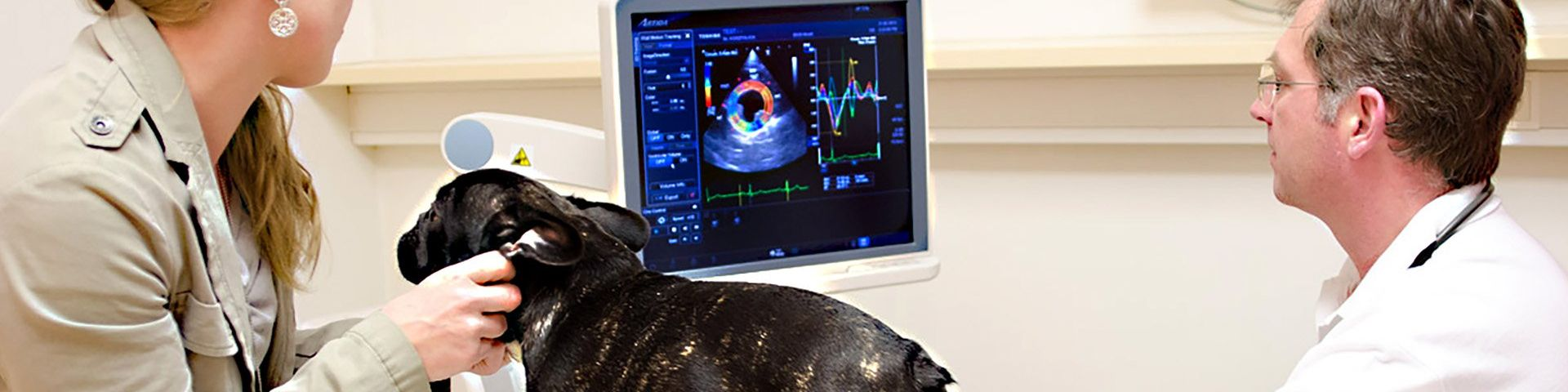 Dr Andreas Kosztolich diagnoses a dog using an Artida high-end Ultrasound system from Canon Medical (Image courtesy of Canon Medical Systems Europe VISIONS Magazine)